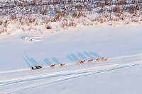 Alan Stevens team is loose without its musher on the Yukon River heading toward the Galena checkpoint on Friday March 13, 2015 during Iditarod 2015.  <br /> <br /> (C) Jeff Schultz/SchultzPhoto.com - ALL RIGHTS RESERVED<br />  DUPLICATION  PROHIBITED  WITHOUT  PERMISSION