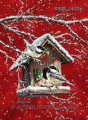 Dona Gelsinger, CHRISTMAS SYMBOLS, paintings+++++,USGE1407A,#xx#
