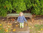 Toddler on wet fall afternoon by bench and cedar bush.