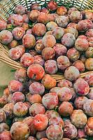 Fresh Fruit, Plumes, Produce, Farmers Market, Farm-fresh produce, fruits,