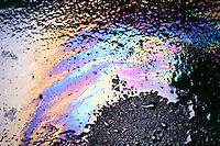 INTERFERENCE OF LIGHT -THIN FILM OF OIL<br /> Oil on water in street