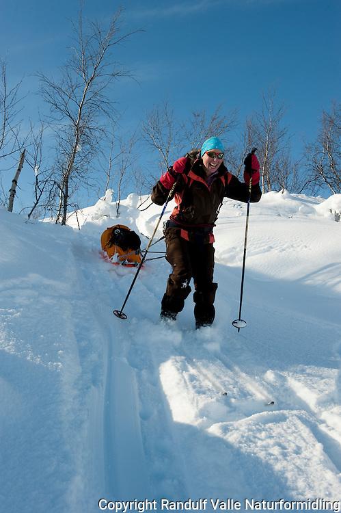 Dame kjører på ski ned bratt bakke med pulk på slep. ---- Woman skiing dowon slope with sled.