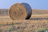 Hay Bale in Rolling Field Against Blue Sky
