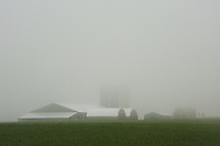 Fog obscures the silos of a prosperous Amish farm in Southern Ontario, Canada.