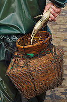 Throw-net fisherman, fishing in the harbour where the Maritime Silk Road began during many centuries, near Xu Wen, Guangdong province, China