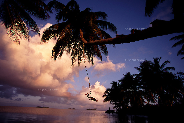 "The largest purchase to date for the Nature Conservancy is the Palmyra an atoll situated about 300 miles north of the equator.  The cook at their makeshift camp uses a palm tree as a rope swing. Palmyra has five times as many coral species as the Florida Keys and three times as many as Hawaii.  It is home to the world's largest invertebrate, the rare coconut crab, and a population of red-footed booby birds second only to that of the Galapagos.  It is the last marine wilderness area left in the U.S. tropics and is home to the last remaining stands of Pisonia grandis beach forest in the world.  Palmyra was a US Navy supply base in World War II, the site of a proposed nuclear waste dump, an unsuccessful coconut plantation and of various development schemes.  Palmyra is most famous for the 1974 slaying  of a married couple which became the subject of the best-selling book ""And the Sea Will Tell,"" by Vincent Bugliosi."