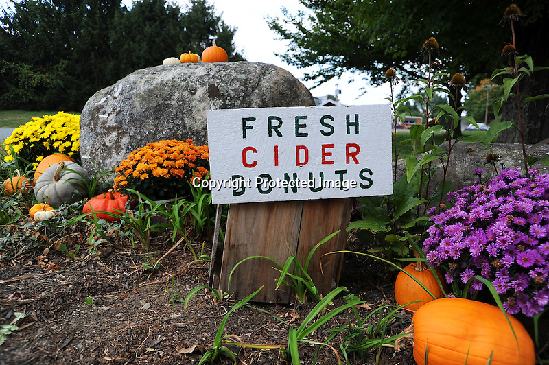 Sign Advertising Fresh Cider and Donuts at Apple Orchard in Vermont USA