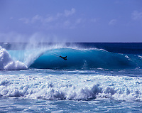Bodyboarder at Banzai Pipeline, Enukai Beach Park, Oahu, Hawaii, USA.