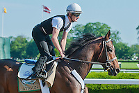 Atigun puts in his final workout of four furlongs, breezing in 48.55 in preparation for the 2012 GI Belmont Stakes at Belmont Park in Elmont, NY.