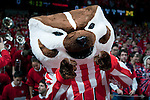 January 20, 2010: Wisconsin Badgers mascot Bucky Badger cheers during a Big Ten Conference NCAA basketball game against the Michigan Wolverines at the Kohl Center on January 20, 2010 in Madison, Wisconsin. The Badgers won 54-48. (Photo by David Stluka)