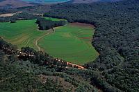 Soy plantation clearing Atlantic rainforest, Parana State, Brazil. Deforestation for the agribusiness. Economic development creating ecological unbalance.