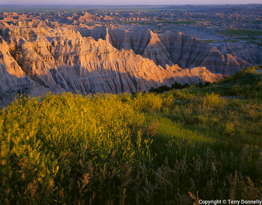 Badlands National Park, SD  <br /> Evening lighyt on the eroded landforms  at the Pinnacles Overlook