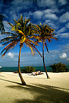 Florida: Florida Keys, beach, Islamorada.  Photo: flkeys102.Photo copyright Lee Foster, 510/549-2202, lee@fostertravel.com, www.fostertravel.com