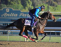Concave, trained by Doug O'Neill, trains for the Breeders' Cup Juvenile Fillies at Santa Anita Park in Arcadia, California on October 30, 2013.