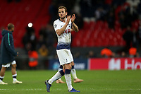 Harry Kane of Tottenham Hotspurafter Tottenham Hotspur vs PSV Eindhoven, UEFA Champions League Football at Wembley Stadium on 6th November 2018