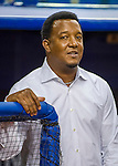 1 April 2016: Former Boston Red Sox pitcher and Member of the Baseball Hall of Fame, Pedro Martinez looks out from the dugout prior to a pre-season exhibition game between the Sox and the Toronto Blue Jays at Olympic Stadium in Montreal, Quebec, Canada. The Red Sox defeated the Blue Jays 4-2 in the first of two MLB weekend exhibition games, which saw an attendance of 52,682 at the former home on the Montreal Expos. Mandatory Credit: Ed Wolfstein Photo *** RAW (NEF) Image File Available ***