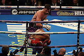 2nd February 2019 The O2 Arena, London, England; Boxing, European Super-Welterweight Championship, Sergio Garcia versus Ted Cheeseman; Undercard fight as Scott Fitzgerald knocks down Radoslav Mitev and wins by TKO