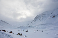 James Dalton Highway, Arctic, Alaska.