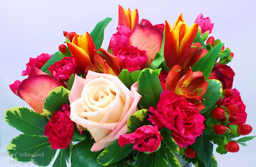 Beautiful colourful mixed flower arrangement with light background