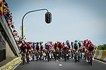 The peloton enter Brussels during Stage 1 of the 2019 Tour de France running 194.5km from Brussels to Brussels, Belgium. 6th July 2019.<br /> Picture: ASO/Alex Broadway | Cyclefile<br /> All photos usage must carry mandatory copyright credit (© Cyclefile | ASO/Alex Broadway)