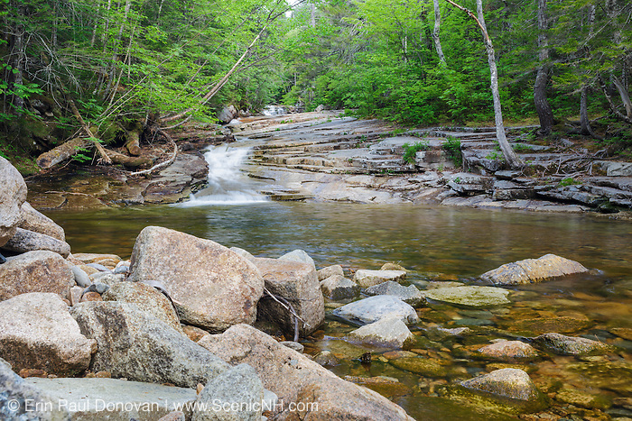 Fawn Pool in Harts Location, New Hampshire USA during the spring months. This pool is located just below Coliseum Falls along Bemis Brook, and the area is part of Crawford Notch State Park.