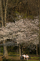 A couple relaxes among the flowering trees in Freedom Park in Charlotte, NC