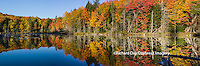 64776-010.20 Fall Color at small lake or pond Alger county in the Upper Peninsula, MI