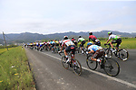 The peloton including Tao Geoghegan Hart (GBR) Team Ineos and Fabio Aru (ITA) UAE Team Emirates laughing at Pierre Latour (FRA) AG2R La Mondiale just after Km0 the start of Stage 4 of La Vuelta 2019 running 175.5km from Cullera to El Puig, Spain. 27th August 2019.<br /> Picture: Eoin Clarke | Cyclefile<br /> <br /> All photos usage must carry mandatory copyright credit (© Cyclefile | Eoin Clarke)
