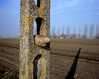 Nearly 100 years after First World War (WWI) Dirk farmers still plough up WW1 munitions from fields in the area of the Ypres Salient. The farmers often leave them in telegraph poles at the side of the road for the Belgian Unexploded Ordnance Disposal Group to deal with.