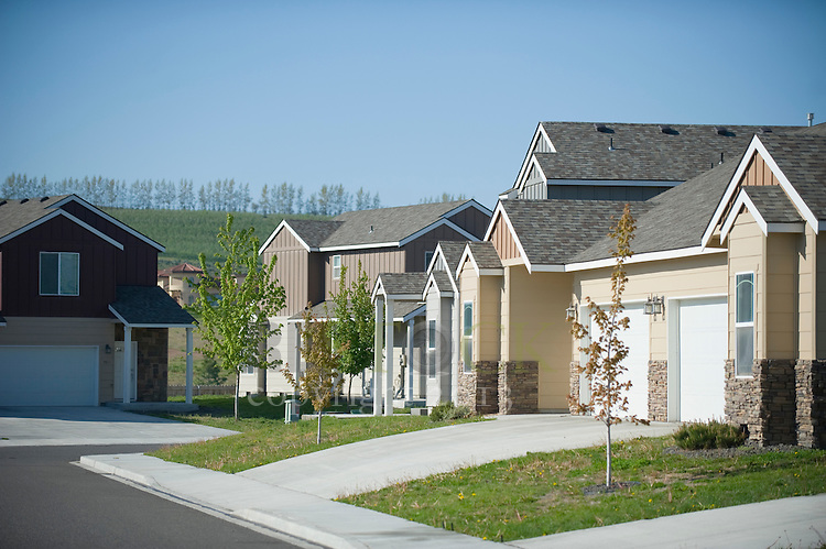 Homes in a Neighborhood