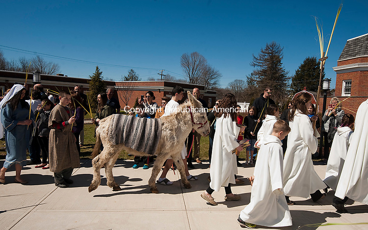 PROSPECT, CT-040917JS03- Jack Mardin, center, portraying Jesus, walks with a donkey and his apostles during Palm Sunday at St. Anthony's Church in Prospect. The procession was followed by a Mass inside  the church. The donkey, named Moses, was provided by Farm on Wheels of Prospect.  <br />  Jim Shannon Republican-American
