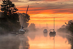 Pictured:  Sunrise this morning on the River Frome, in Wareham, Dorset.<br /> <br /> A chilly start to the day with mist rising up from the River Frome this moring with a glorious orange sunrise.<br /> <br /> Please byline:  Steve Hogan/Solent News<br /> <br /> ©  Steve Hogan/Solent News & Photo Agency<br /> UK +44 (0) 2380 458800