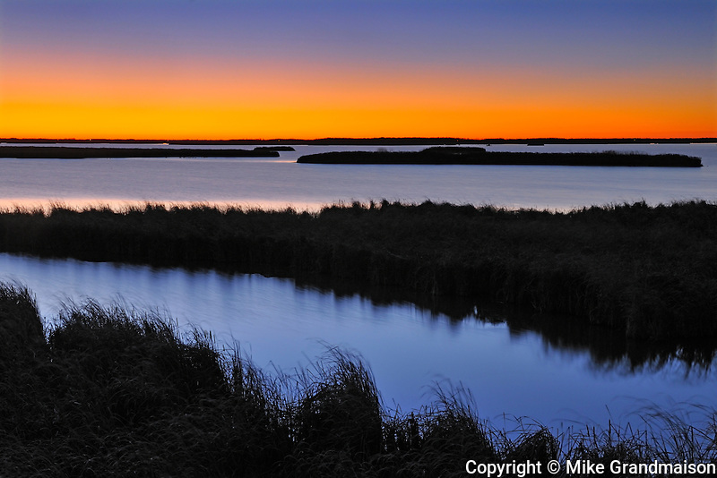 Dawn on wetland<br /> Oak Hammock Marsh<br /> Manitoba<br /> Canada