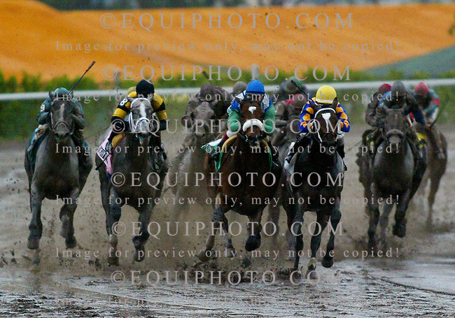 Barbaro(center), and jockey Edgar Prado, go around the turn ahead of Doctor Decherd (Right) and Flashy Bull (Left) to win the $150,000 Grade III Holy Bull Stakes on February 4, 2006 at Gulfstream Park. Photo by Matt Dean/EQUI-PHOTO