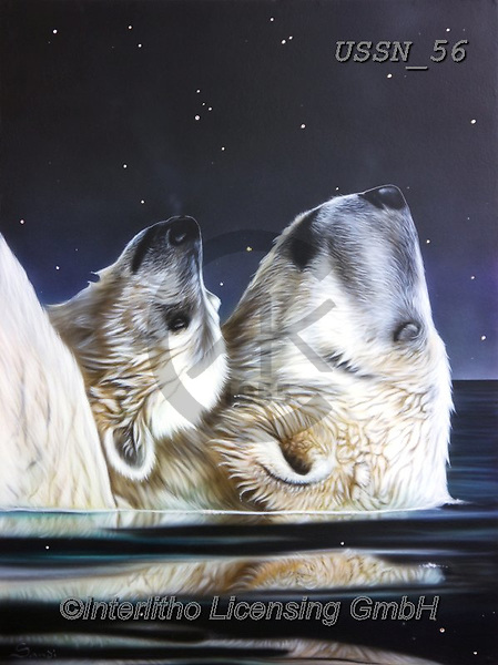 Sandi, REALISTIC ANIMALS, REALISTISCHE TIERE, ANIMALES REALISTICOS, paintings+++++littlestar,USSN56,#a#, EVERYDAY ,polar bears ,puzzles