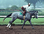 Jaklin Klugman, owned by Jack Klugman.  Jacinto Vasquez up, Saratoga 1980
