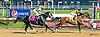 Strong Stipulation winning at Delaware Park on 7/11/15