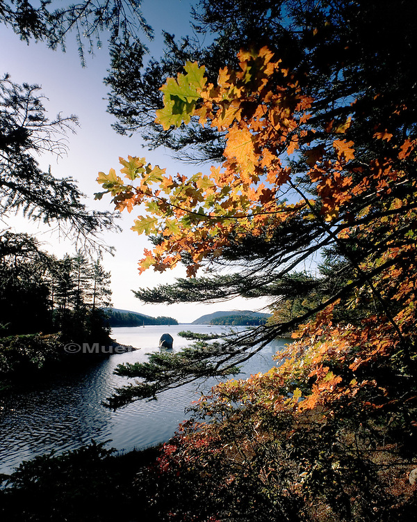 Somes Sound Acadia NP  MAINE