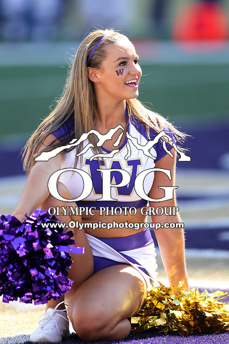 Sept 13, 2014: Washington cheerleader Lexi Nunes entertained fans during the game against Illinois.  Washington defeated Illinois 44-19 at Husky Stadium in Seattle, WA.