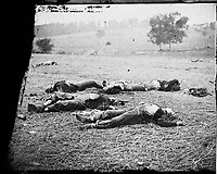 """Field where General Reynolds Fell"""" in Alexander Gardner's<br /> Photograph from the main eastern theater of the war, Gettysburg, June-July, 1863."""