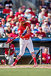24 February 2019: St. Louis Cardinals top prospect infielder Edmundo Sosa at bat during a Spring Training game against the Washington Nationals at Roger Dean Stadium in Jupiter, Florida. The Cardinals fell to the Nationals 12-2 in Grapefruit League play. Mandatory Credit: Ed Wolfstein Photo *** RAW (NEF) Image File Available ***