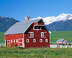Wallowa County, OR   <br /> The red Eggleson barn and stiped shed near Enterprise witht the snow capped Wallowa Range in the distance