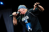 SUICIDAL TENDENCIES (2012)