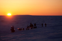 Spectators from Nome watch as Ken Anderson runs on the trail just outside Nome as the sun sets over the Bering Sea during the 2010 Iditarod
