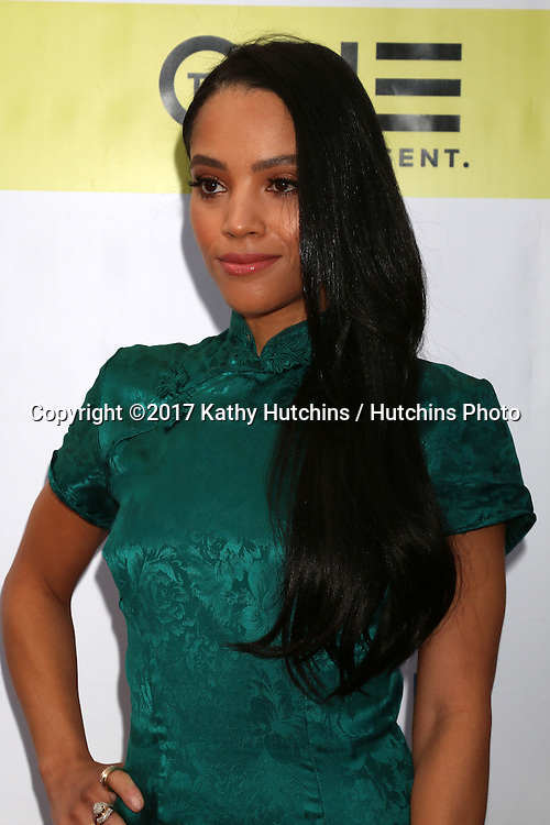 LOS ANGELES - FEB 11:  Bianca Lawson at the 48th NAACP Image Awards Arrivals at Pasadena Conference Center on February 11, 2017 in Pasadena, CA