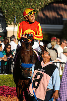 Executiveprivilege in the paddock for the Del Mar Debutante at Del Mar Race Course in Del Mar, California on September 1, 2012.