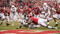 Hawgs Illustrated/BEN GOFF <br /> McTelvin Agim, Arkansas defensive end, forces Nick Gibson (21), Mississippi State running back, to fumble in the first quarter Saturday, Nov. 18, 2017, at Reynolds Razorback Stadium in Fayetteville. The ball was recovered by Briston Guidry, Arkansas defensive end, for a touchdown.