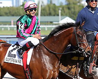 HALLANDALE BEACH, FL - FEBRUARY 04:  Tequilita (KY) #4 with jockey Luis Saez in the post parade of the Forward Gal Stakes G2 at Gulfstream Park on February 04, 2017 in Hallandale Beach, Florida. (Photo by Liz Lamont/Eclipse Sportswire/Getty Images)