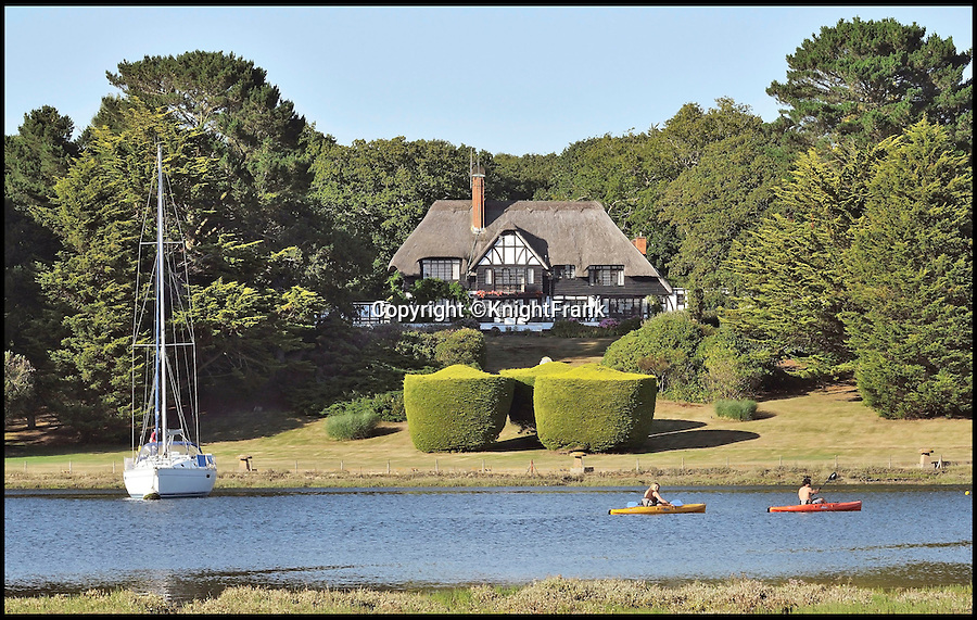 BNPS.co.uk (01202 558833)<br /> Pic: KnightFrank/BNPS<br /> <br /> Nestled in the heart of the New Forest alongside the unspoilt Beaulieu river.<br /> <br /> Lovely bubbly - does this idyllic riverside estate pop your cork?<br /> <br /> This multi-million pounds home is sure to put some fizz into the property market - as it was bought on the back of the Babycham empire.<br /> <br /> Spearbed Copse belongs to the Showering family which created the sparkling pear drink that was a hit with young women in the 1960s and '70s.<br /> <br /> The tipple was the first alcoholic drink to be advertised on British TV and the money made from its booming success enabled brewer Francis Showering to purchase a grand family home in Beaulieu, Hants.
