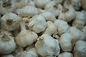 London, UK. 15.11.2014. Garlic bulbs, Borough Market. Photograph © Jane Hobson.